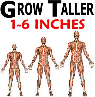Magical Exercises To Grow Taller